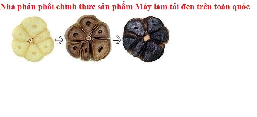 nha-phan-phoi-may-lam-toi-den