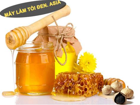 cách làm tỏi đen ngâm mật ong