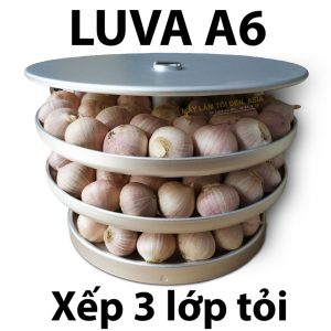khay-đã-xếp-tỏi-1-lớp-800x800-asia