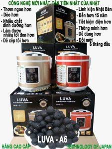Hình máy làm tỏi đen LUVA A6 cao cấp Technology of Japan