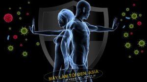 Tỏi đen ngăn ngừa nhiễm trùng, tăng cường hệ miễn dịch.