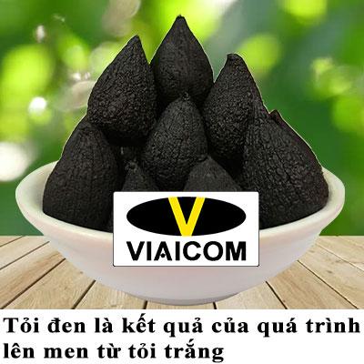 tỏi đen là gì 2 - Công dụng của tỏi đen có tác dụng với sức khỏe thật là kỳ diệu.