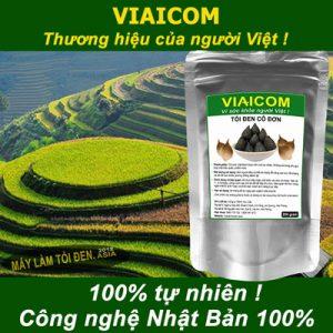 tỏi 100 tự nhiên công nghệ Nhật 1 300x300 - Tỏi đen cô đơn xuất khẩu VIAICOM - Túi 250gram
