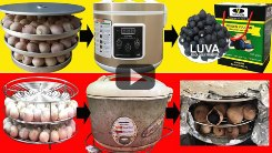 thumbnail youtube video 31 1 19 245x138 - Hãy xem trước khi bạn quyết định có nên mua máy làm tỏi đen hay không!