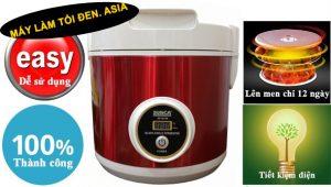 máy ủ tỏi đen sunca sf-g100