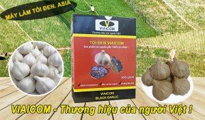 viaicom nhieu nhanh1 300x176 - Công dụng của tỏi đen có tác dụng với sức khỏe thật là kỳ diệu.