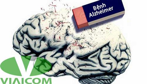 Ăn tỏi giúp ngăn ngừa bệnh Alzheimer