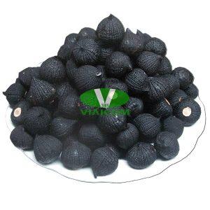 a tỏi đen VIAICOM V6 300x300 - Đĩa tỏi đen VIAICOM V6