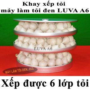 Khay Luva A6 xếp được 6 lớp tỏi 600x600 asia web 300x300 - Khay-Luva-A6-xếp-được-6-lớp-tỏi-600x600-asia-web