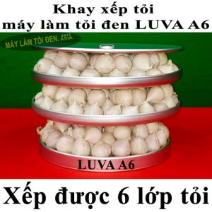 Khay Luva A6 xếp được 6 lớp tỏi asia web 300x300 - Khay-Luva-A6-xếp-được-6-lớp-tỏi-asia-web