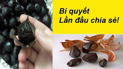 Làm tỏi đen bị ướt nhão nâu đen vỏ và bí quyết xử lý như nào - Làm tỏi đen bị ướt nhão, nâu, đen vỏ và bí quyết xử lý như nào?