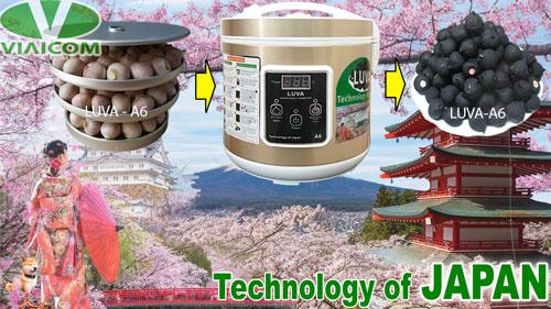 Máy làm tỏi đen LUVA A6 công nghệ Nhật Bản