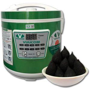 Máy làm tỏi đen VIAICOM V6 300x300 - Máy làm tỏi đen VIAICOM V6