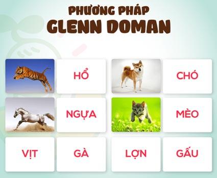 PP GLENN DOMAN - Phương pháp Glenn Doman