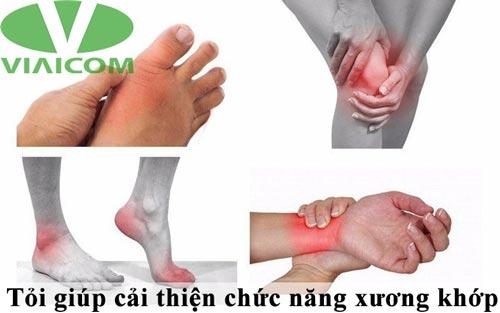 Tỏi giúp cải thiện chức năng xương khớp