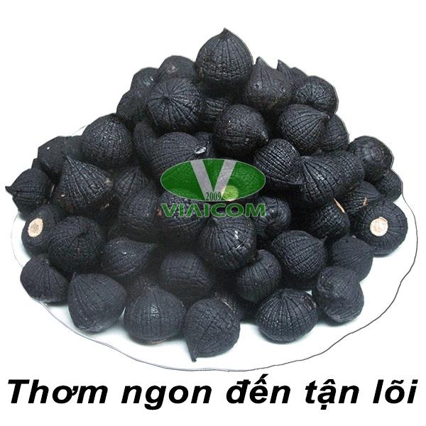 Thơm ngon đến tận lõi củ tỏi - Máy làm tỏi đen VIAICOM V6 - 6 lít - Công Nghệ Nhật Bản Mới Nhất