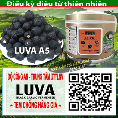 a5 tem CHG c%C3%B3 logo asia  - Nồi làm tỏi đen Luva A5 (mới)