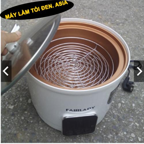 Máy ủ tỏi đen FAIRLADY DH-809