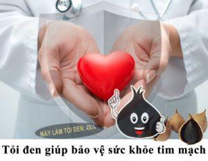 bảo vệ tim mạch 300x232 - bảo-vệ-tim-mạch