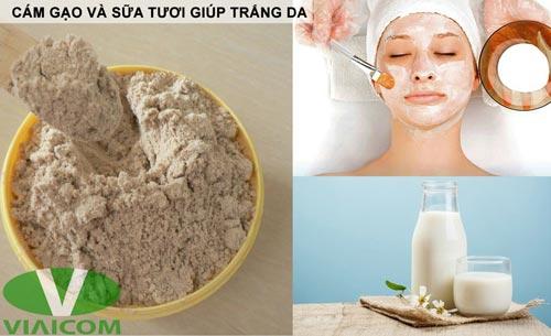 cám gạo và sữa tươi giúp trắng da