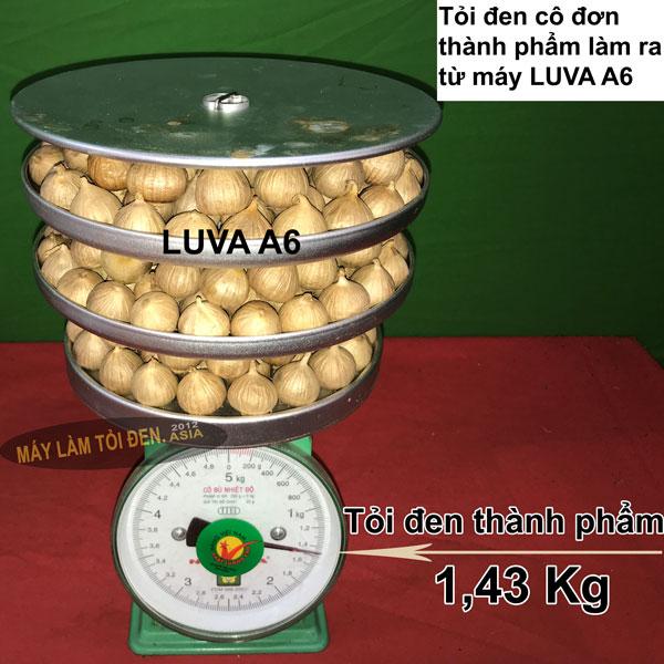 Cân khay xếp tỏi thành phẩm làm từ máy làm tỏi đen LUVA A6