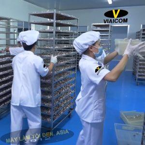 công nhân Kim cương viaicom 900x900 asia 300x300 - Tỏi đen cô đơn xuất khẩu VIAICOM - Túi 250gram
