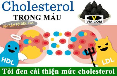 dieu hoa cholesterol ASIA 1 - Công dụng của tỏi đen là gì?