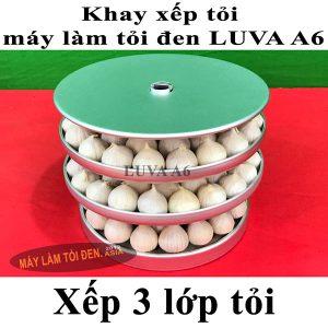 khay đã xếp tỏi 3 lớp 600x600 asia web 300x300 - khay-đã-xếp-tỏi-3-lớp-600x600-asia-web