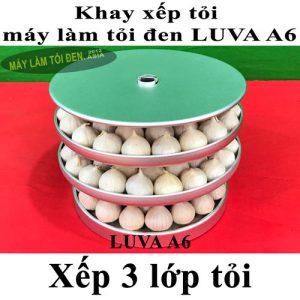 khay đã xếp tỏi 3 lớp asia web 300x300 - khay-đã-xếp-tỏi-3-lớp-asia-web