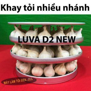 khay tỏi trắng nhiều nhánh D2 300x300 - Máy làm tỏi đen CN NHẬT BẢN LUVA D2 (New)