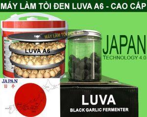 Khay và lọ tỏi đen thành phẩm máy làm tỏi đen LUVA A6