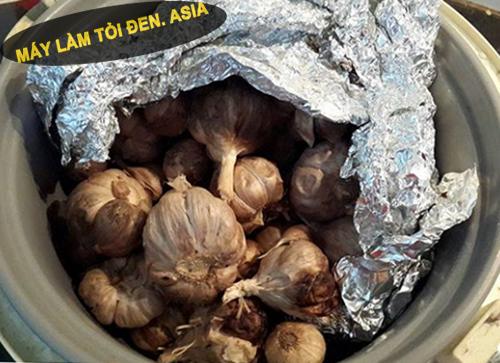 lam toi den bang noi com dien 2 - Làm tỏi đen bằng nồi cơm điện có tốt không?