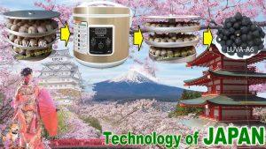 Hình khay máy và thành phẩm tỏi đen của Máy làm tỏi đen Luva A6 - JAPAN Technology.