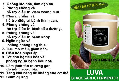 tác dụng của tỏi đen máy A6 asia web - Máy Làm Tỏi Đen LUVA A6 CN NHẬT BẢN (Cao Cấp - Mới)