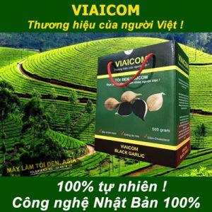 tỏi đen 500g thường 300x300 - Cách sử dụng tỏi đen cô đơn VIAICOM tốt và hiệu quả nhất