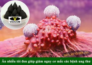 tỏi đen phòng chống ung thư 300x212 - tỏi-đen-phòng-chống-ung-thư