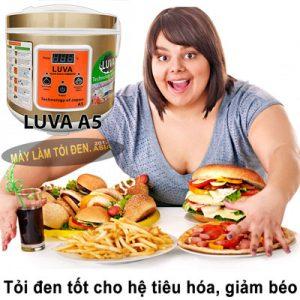 tỏi đen tốt cho tiêu hóa 300x300 - tỏi-đen-tốt-cho-tiêu-hóa