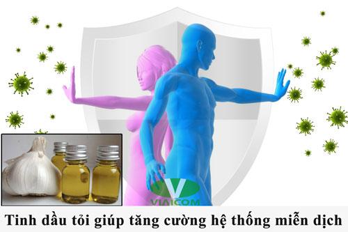 Tinh dầu tỏi tăng cường hệ thống miễn dịch