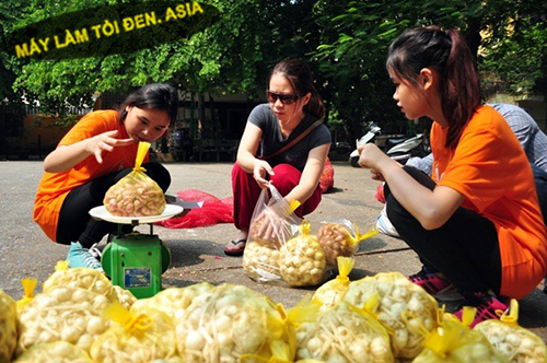 tỏi cô đơn ở Hà Nội