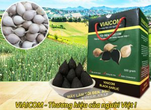toi co don viaicom 500g 400 300x220 - toi-co-don-viaicom-500g-400
