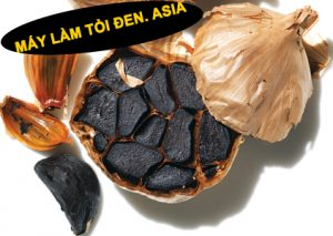tỏi đen của Nhật