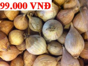 tỏi một nhánh giá chỉ 99000/1kg