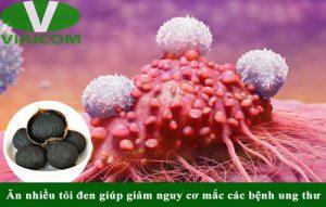 Tác dụng của tỏi đen với ung thư