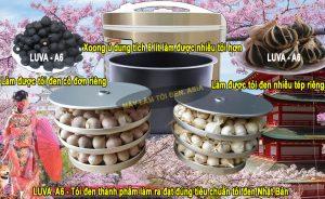 (Click vào hình ảnh để xem ảnh lớn) - Hình khay và xoong máy ủ tỏi đen Luva A6 cùng thành phẩm tỏi đen đạt đúng tiêu chuẩn chất lượng Nhật Bản, có thể xuất khẩu.